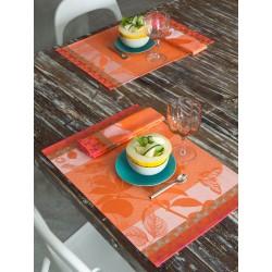 Sets de table enduits Jardin de paradis Abricot, Le Jacquard Français (par 4)