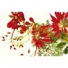 Sets de table Poinsettias Vintage, Garnier-Thiébaut (par 4)